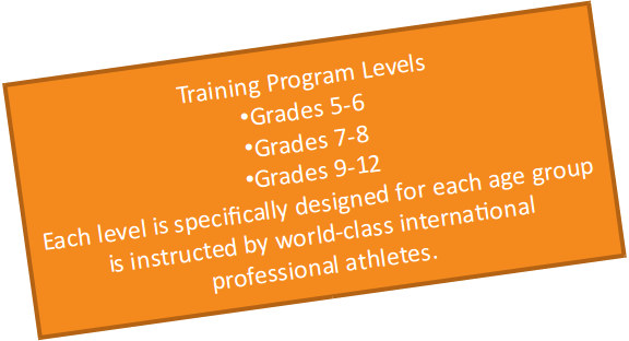 Training Program Levels